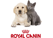 Royal canin - ������� ��� ����� � �����